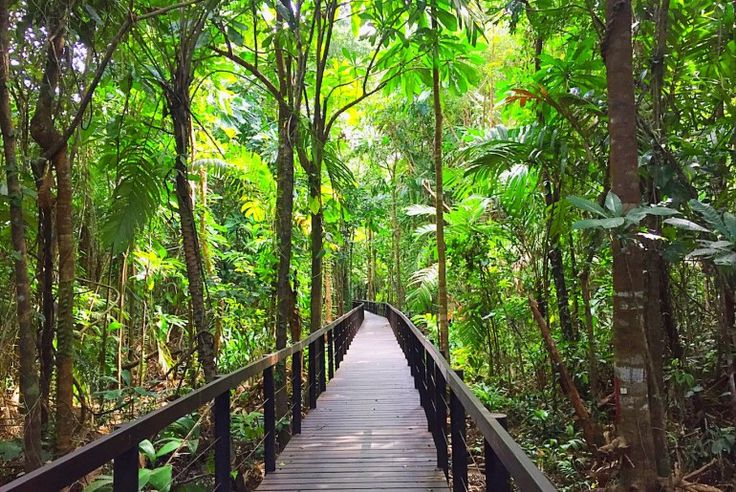 Everything You Need To Know Before Visiting Cahuita National Park