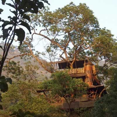 Green Magic Treehouses (India): built in trees 90 feet high