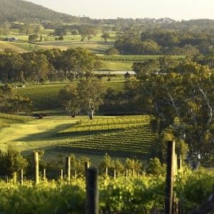 Balhannah, Adelaide Hills. South Australia.