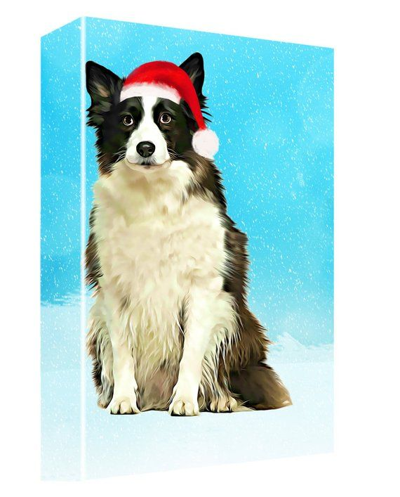 Border Collie Dog Christmas Canvas Wall Art Dog Photo Christmas