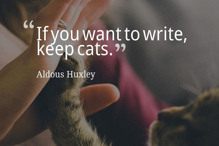 If you want to write keep cats. -Aldous Huxley (author Brave New World) #dogs #cats