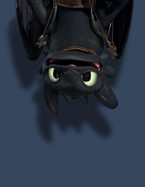 Como Treinar o Seu Dragão! O dragão mais fofo do filme :3
