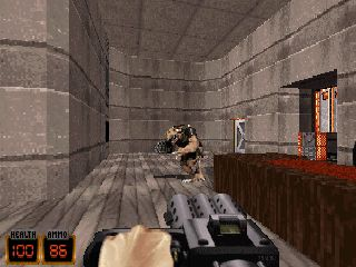 When you think about the first FPS titles with 3D graphics, then the first titles that come to mind are definitely Doom and Duke Nukem 3D.