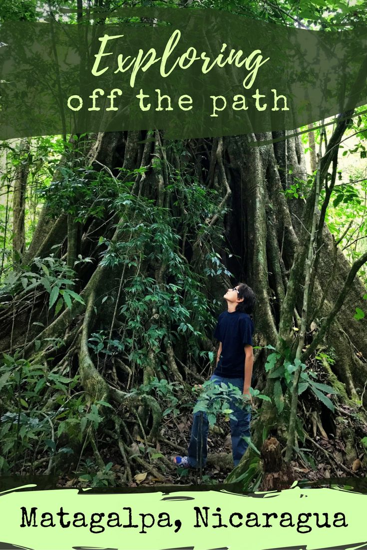 When it was time for a serious reconnect with Aiden, we shut it all down for a few days and headed to the Nicaraguan mountains for a black forest retreat.  Learn about reconnecting with your family at the mountain resort of Selva Negra in Matagalpa, Nicaragua.