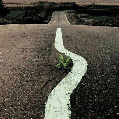 Un'immagine molto diffusa ma, davvero significativa... #ProtectTheEarth  SEGUICI SU: www.facebook.com/CreoEco www.pinterest.com/CreoEco