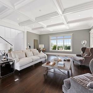 The Guberman Group - living rooms - gray walls, gray wall color, hardwood floors, dark hardwood floors, fireplace, traditional style firepla...