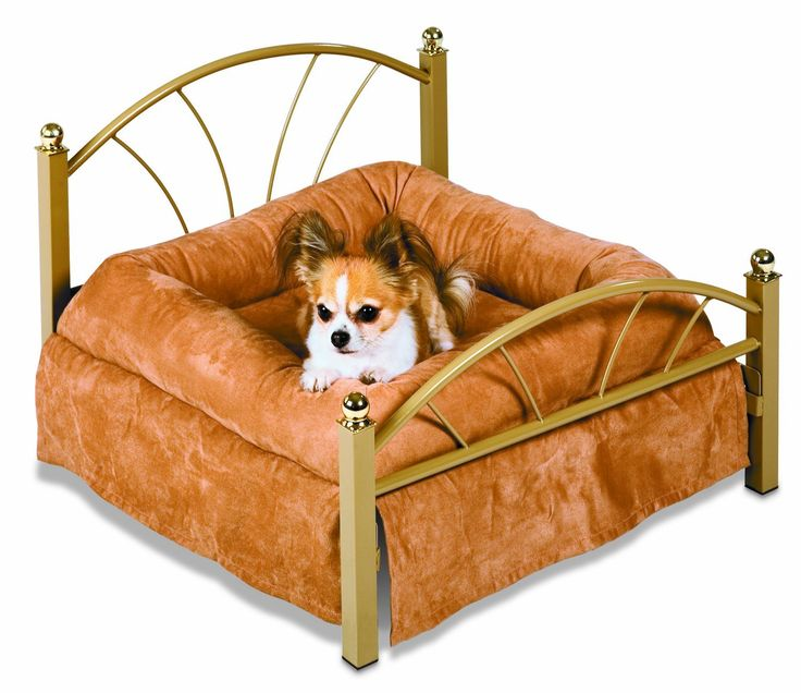 25+ Best Ideas About Small Dog Beds On Pinterest