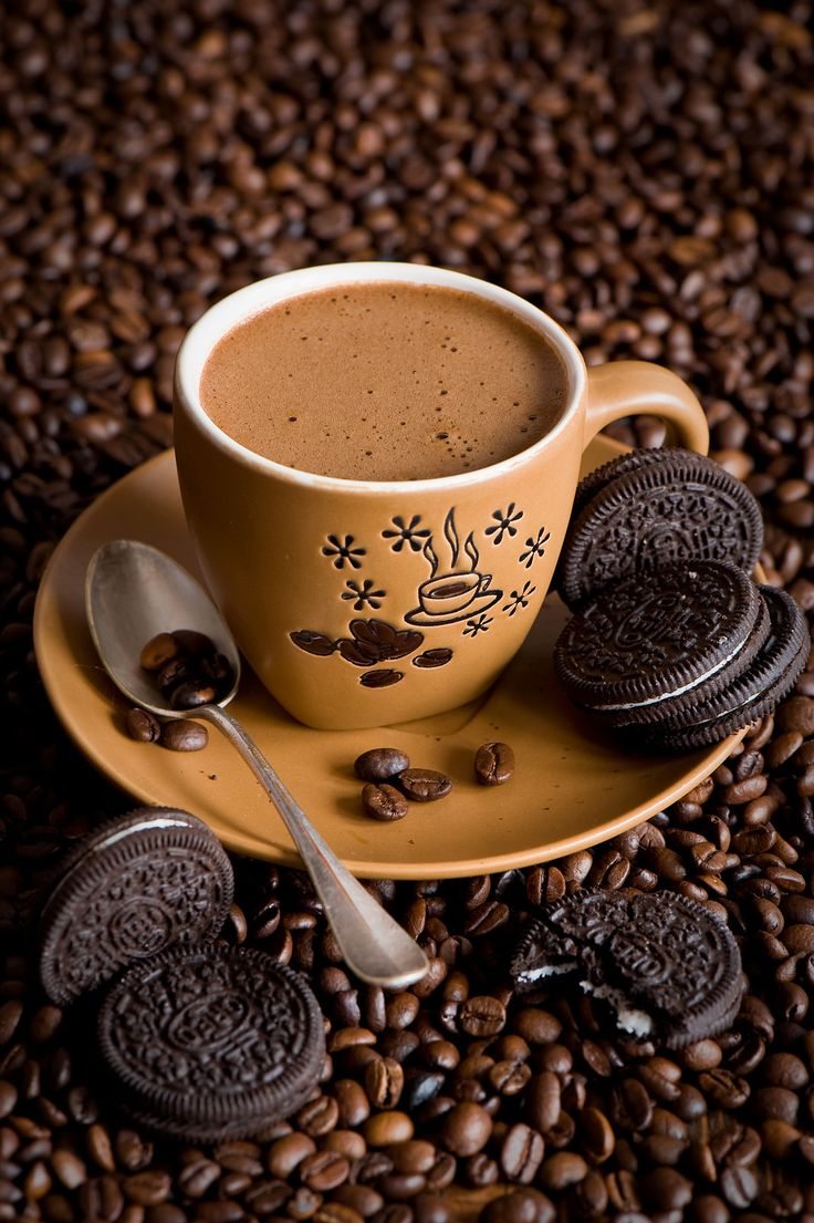 """Reminds me of my Papa. He would let me """"doink"""" cookies in his coffee. So did my daddy. Dunking Perfection..."""