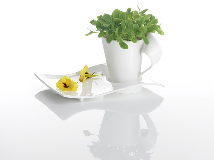 Our New Wave coffee cups also make adorable #FlowerPots
