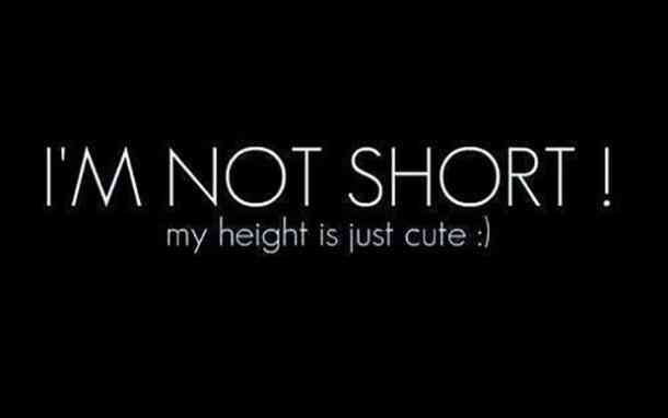 40 Funny Short Girl Quotes Your Girlfriend Will Appreciate To The Fullest Short Funny Quotes Short Girl Quotes Bio Quotes