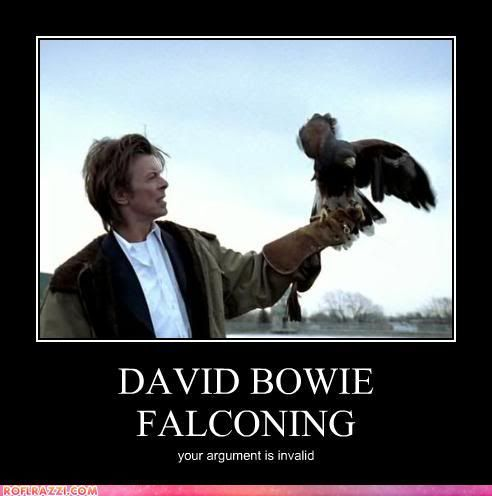 David Bowie Meme | photo funny-celebrity-pictures-david-bowie-falconing.jpg