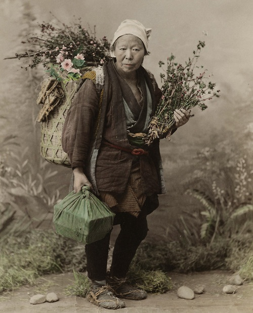 Old woman selling small woods for Ikebana (?), 1880 by Tamamura Kozaburo