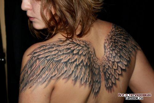 Соединенные крылья на спине