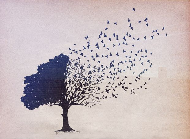 Birds Leaves - Fototapeten & Tapeten - Photowall