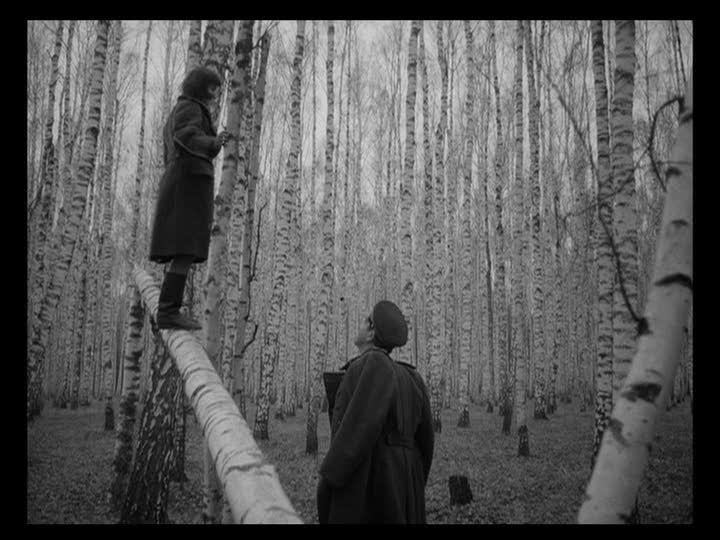 """Birches, """"Ivan's Childhood"""""""