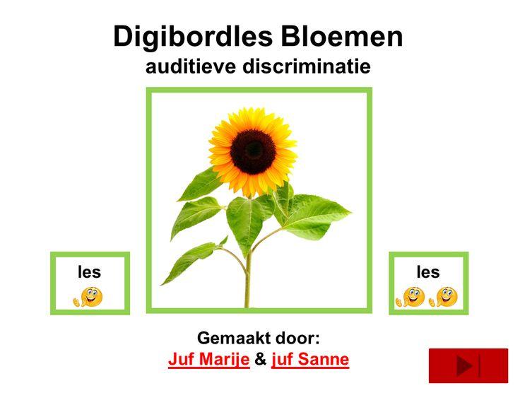 digibordles auditieve discriminatie. Bij doorklikken kom je op diverse klanken.