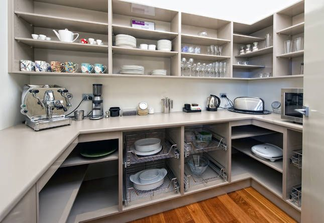 Walk in pantry...I prefer to have some small appliance storage and the rest food storage space.