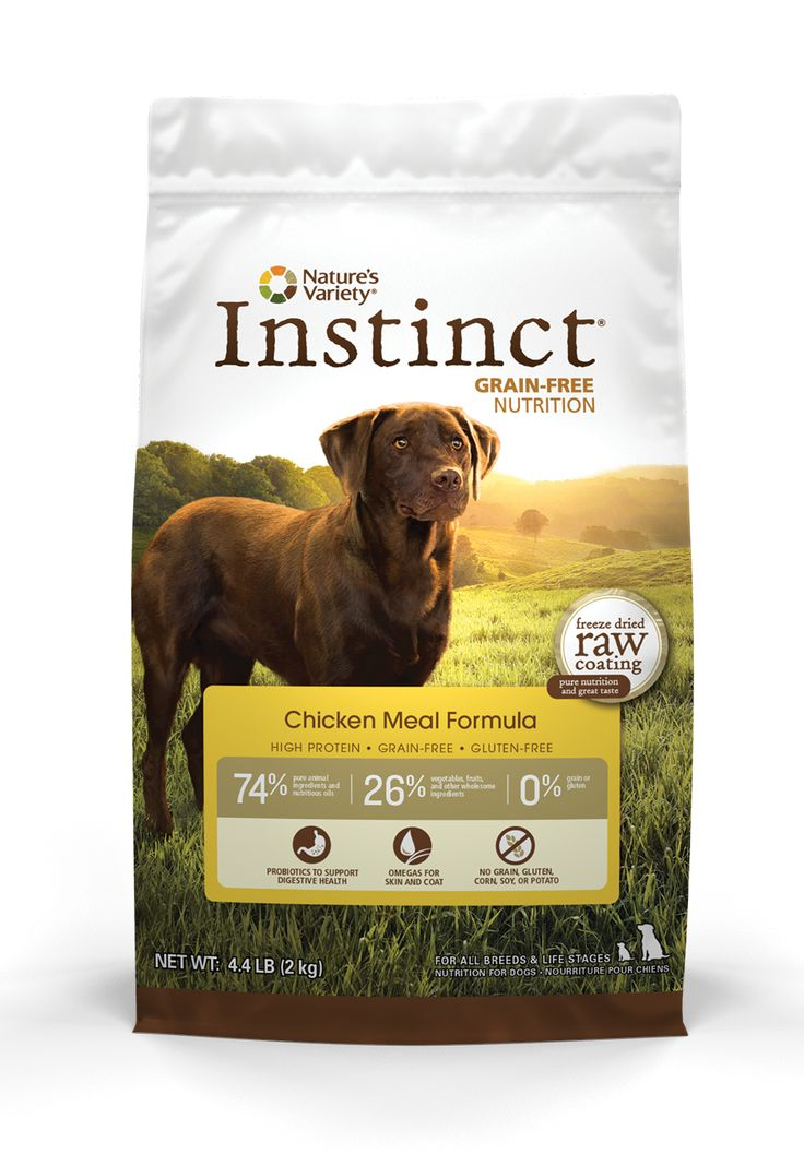 Best Dry Kibble For Dogs With Allergies