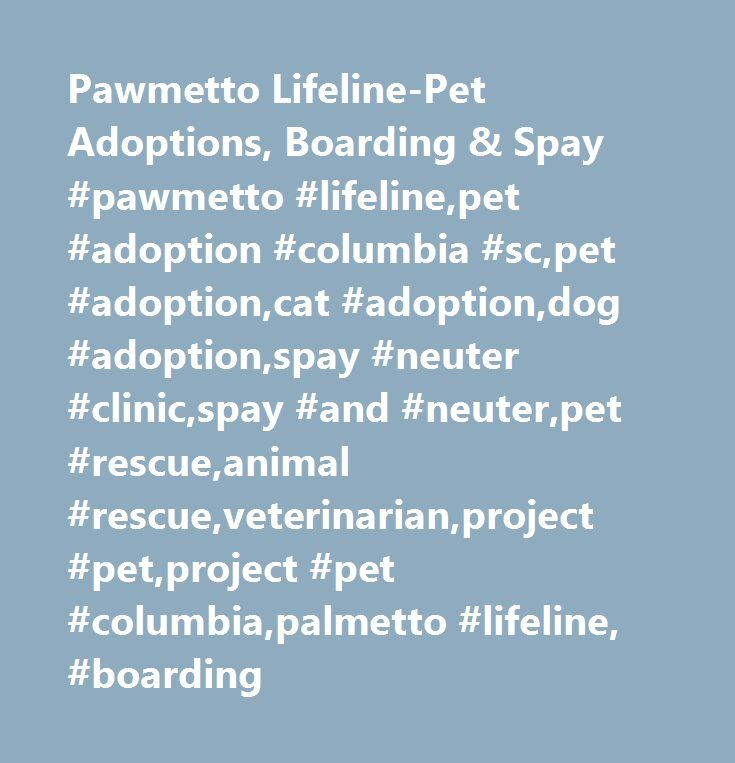 Pawmetto Lifeline-Pet Adoptions, Boarding & Spay #pawmetto #lifeline,pet #adoption #columbia #sc,pet #adoption,cat #adoption,dog #adoption,spay #neuter #clinic,spay #and #neuter,pet #rescue,animal #rescue,veterinarian,project #pet,project #pet #columbia,palmetto #lifeline, #boarding http://new-hampshire.nef2.com/pawmetto-lifeline-pet-adoptions-boarding-spay-pawmetto-lifelinepet-adoption-columbia-scpet-adoptioncat-adoptiondog-adoptionspay-neuter-clinicspay-and-neuterpet-rescueanimal-re/  #…