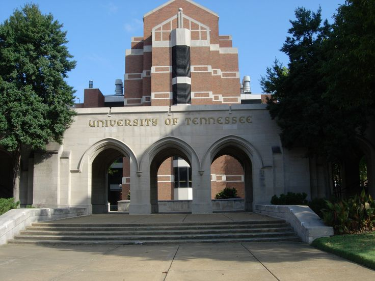 Best 25 University Of Tennessee Ideas That You Will Like