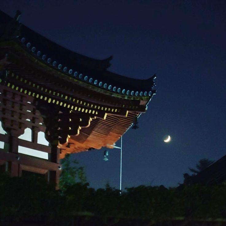 美味しい食事とお酒のあとの夜の散策が楽しい興福寺と三日月が絶品 昼とは違う趣きが好きです久しぶりに奈良へ #奈良 #日本 #nara #japan #japantrip #アトリエ由花 #国内旅行 #夜景 #春日大社 #三日月