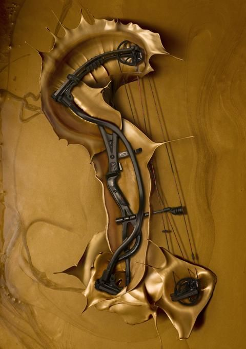 Hoyt Carbon Element.  I prefer a Traditional Long or recurve bow but its so nice.