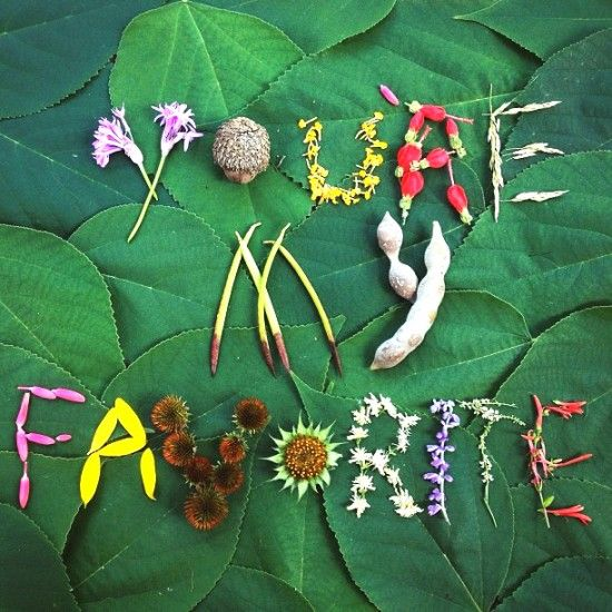 nature love letters   designlovefest