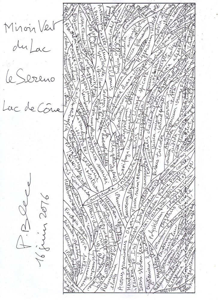 Le Sereno Lago di Como Hotel, Torno | Vertical Garden Patrick Blanc