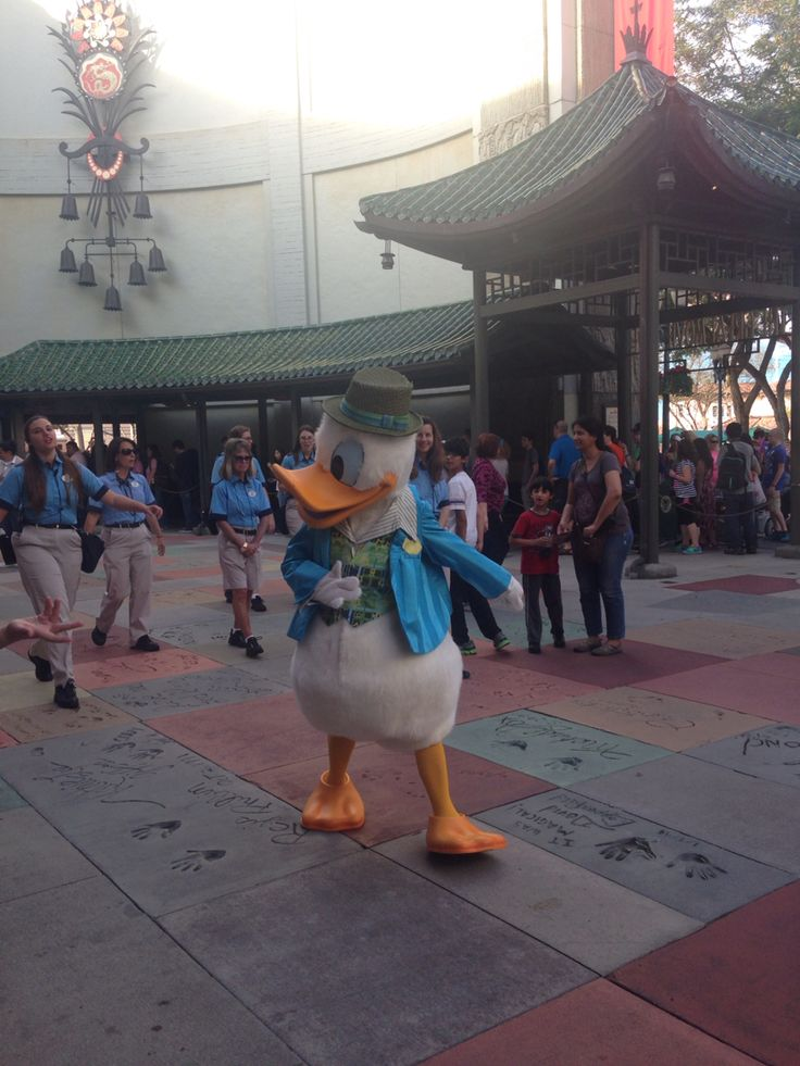 Donald Duck just messing around ☺️
