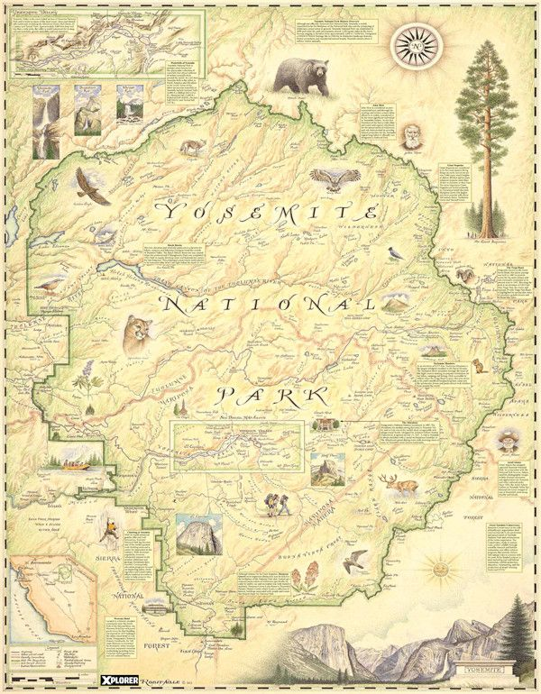 Best National Park Maps Images On Pinterest National Parks - Yosemite national park on us map