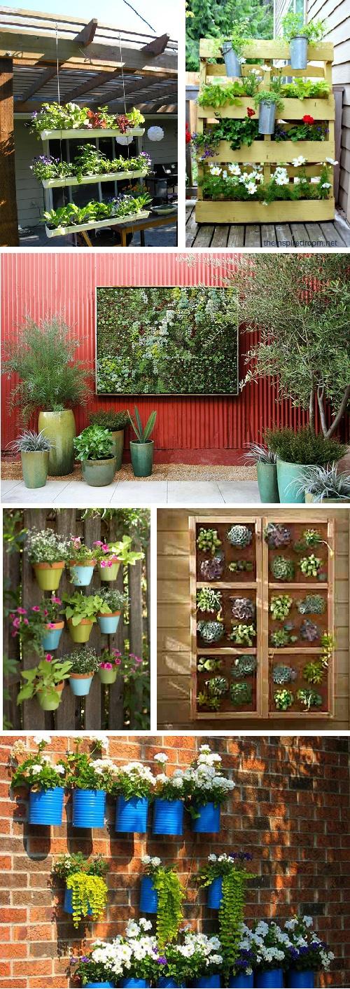 vertical+garden-01.jpg (500×1411)