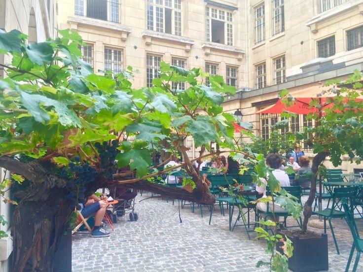 パリのマレ地区にある、隠れ家カフェ・バー。 フラン・ブルジョワ通り沿いのまるで邸宅のような建物の中庭にあるテラス。ショッピングで疲れたとき、ロマンチックなデートも使える人気スポットだ。