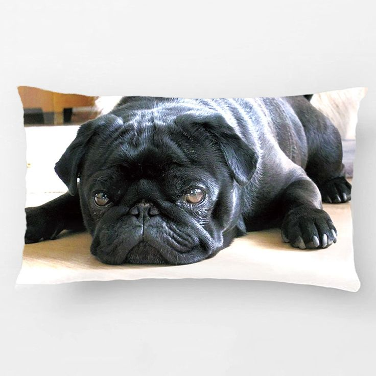 Black Pug Print Pillowcase