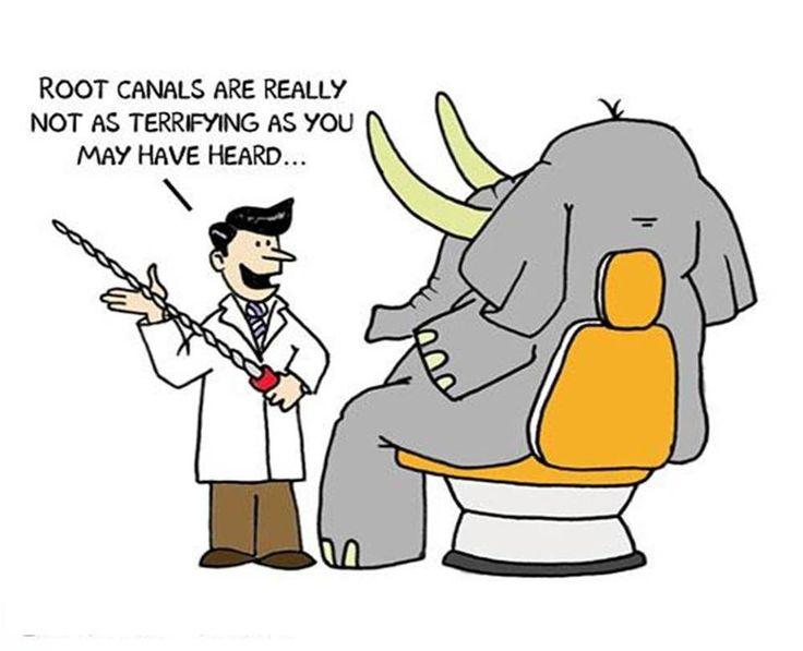 Zahnarzt Bilder Humor