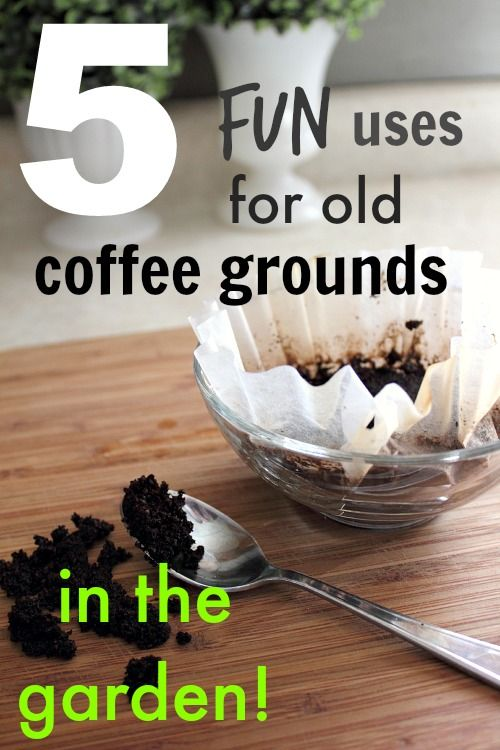 5 useful ways to re-use old coffee grounds in your garden.