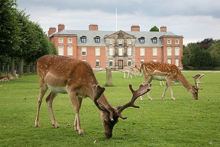 Dunham Massey Hall, Altrincham, Greater Manchester An early Georgian house, Dunham Massey was extensively reworked in the early years of the 20th century. The result is one of Britain's most sumptuous Edwardian interiors, housing exceptional collections of 18th-century walnut furniture, paintings and Huguenot silver, as well as extensive servants' quarters.