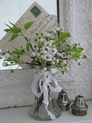 Lovely White Blossoms