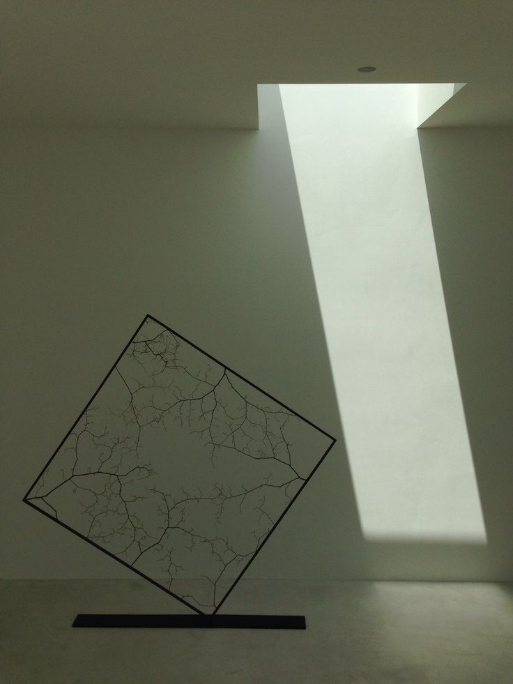 Naoki Sasaki Ikebana art - Florist House, Shinichi Ogawa & Associates, Nagoya (May 2014)