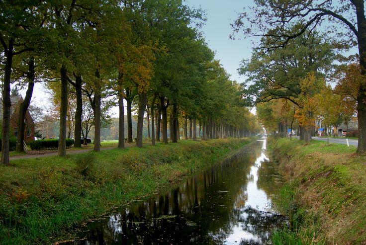 Bakkeveen ,Friesland .Nederland