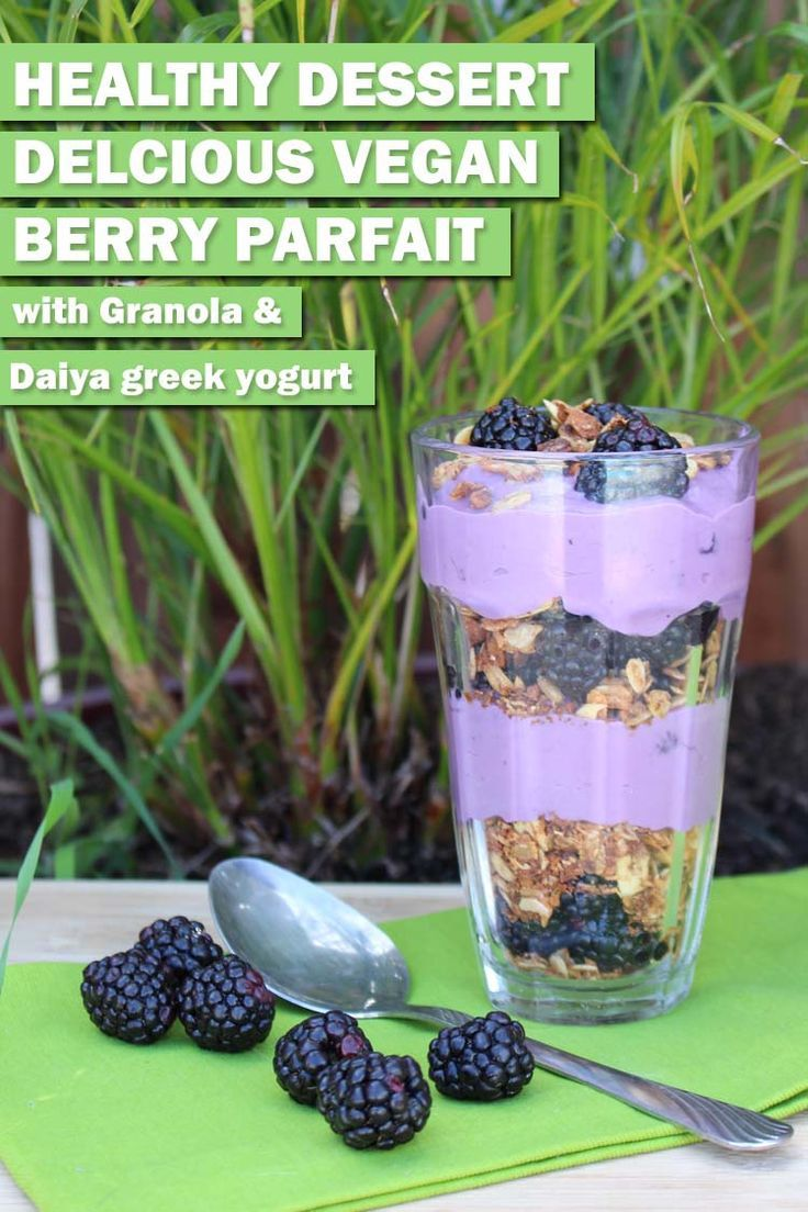 Recipe to make a delicious vegan berry parfait with Daiya greek yogurt. Full recipe with photos and pics of my dalmatian because he's cute!