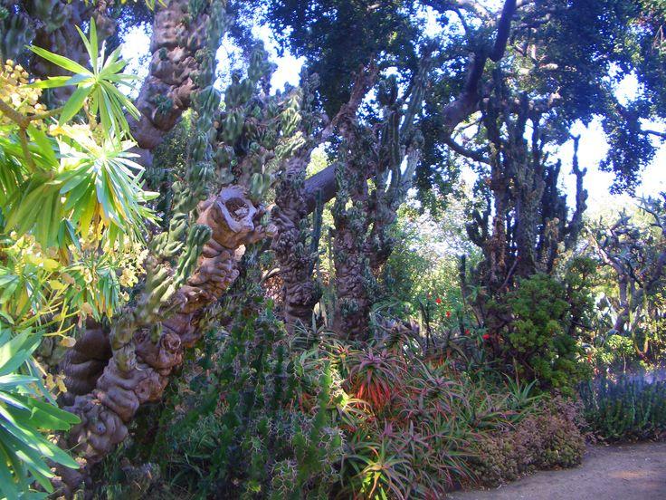 Rancho Los Alamitos, Long Beach