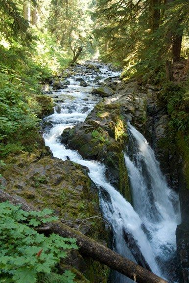 Sol-duc Falls and hot springs.