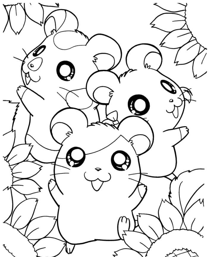 Hamster Coloring Pages Cartoon Coloring Pages Apple Coloring Pages Yoda Art