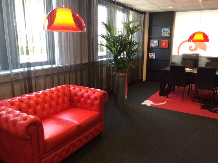 Interior plants in pot, made by Hoveniersbedrijf RA van der Lee BV