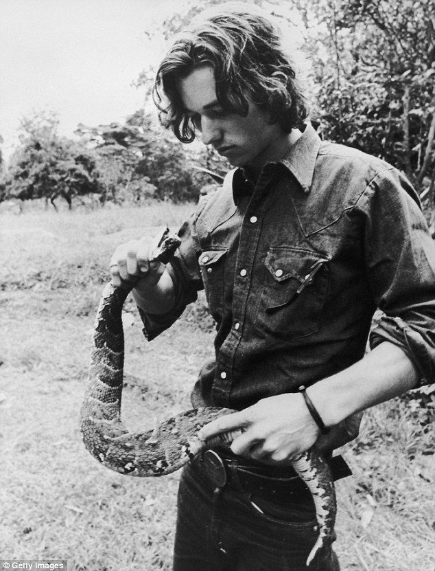 Robert Kennedy Jr holding a puff adder during filming for a television series in Kenya about African wildlife entitled 'The Last Frontier'