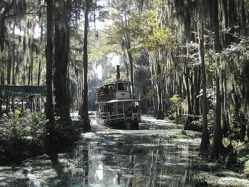 Best Caddo Lake Texas Images On Pinterest State Parks Texas - Caddo lake us map