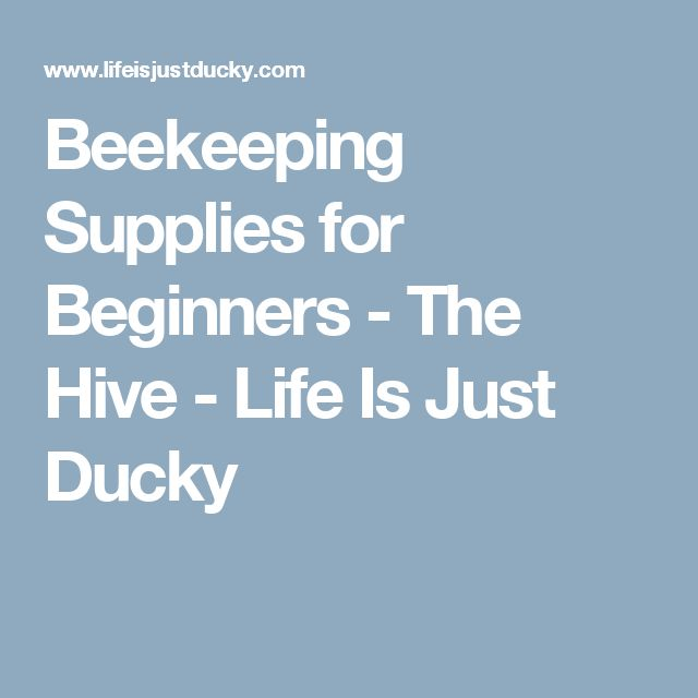 Beekeeping Supplies for Beginners - The Hive - Life Is Just Ducky