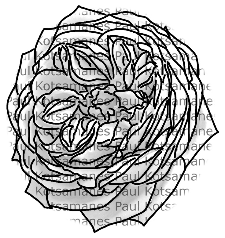 Digital Stamp of a rose I created.