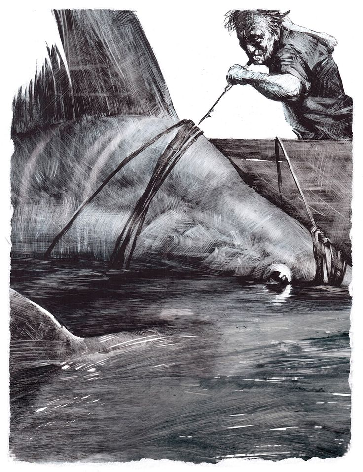 """E.Hemingway """"The Old Man and the Sea"""" Illustrations on Behance"""