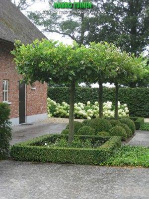 Mooie landelijke tuin
